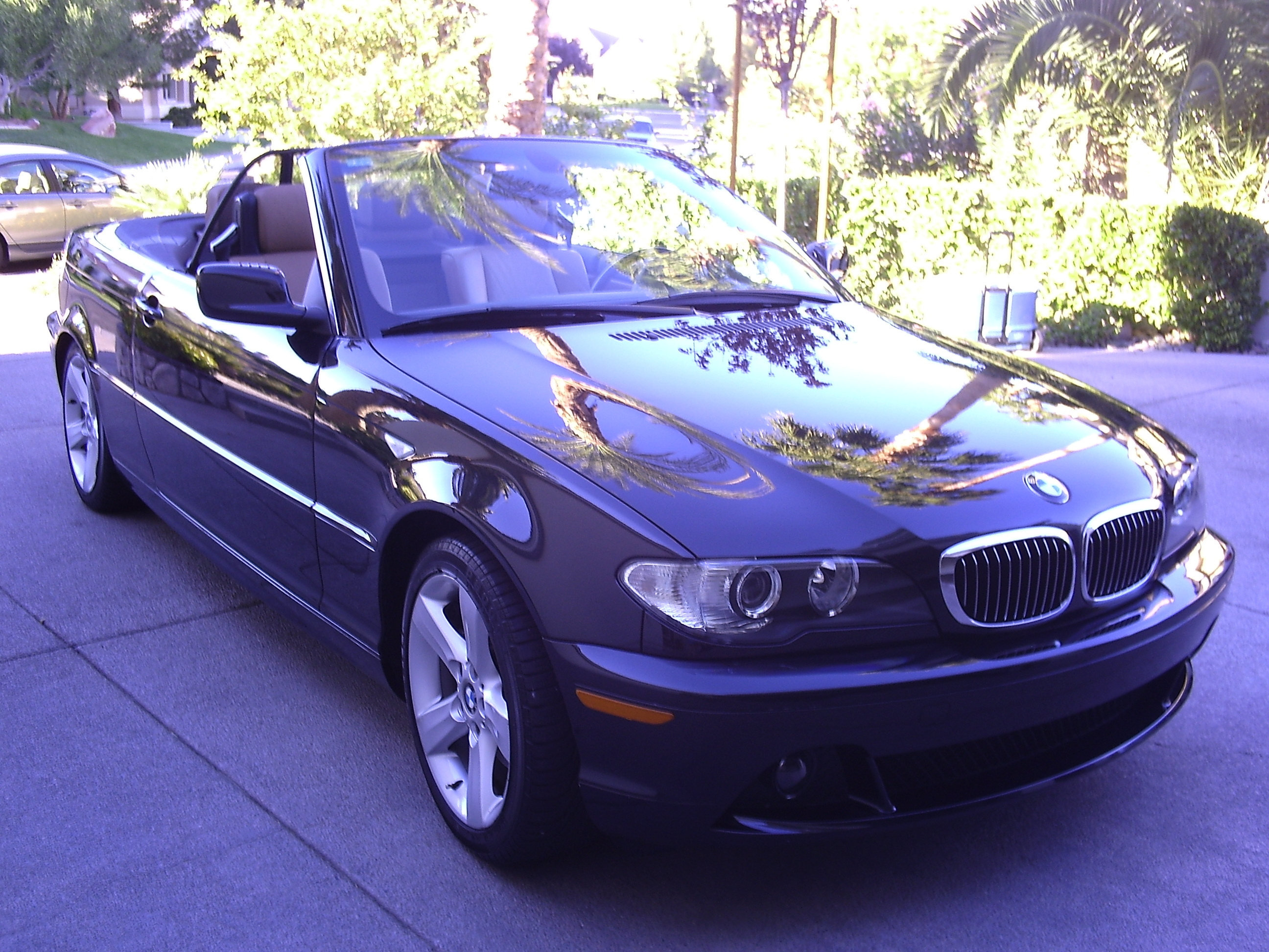 Used BMW I Convertible LAS VEGAS BLACK BEAUTY MYCARLADY - 325i bmw convertible